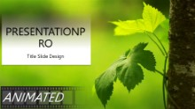 The Ivy Widescreen PPT PowerPoint Animated Template Background