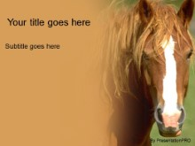 Download horse PowerPoint Template and other software plugins for Microsoft PowerPoint