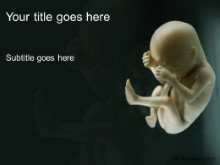 Download unborn PowerPoint Template and other software plugins for Microsoft PowerPoint