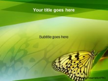 Download celadon butterfly PowerPoint Template and other software plugins for Microsoft PowerPoint