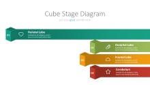PowerPoint Infographic - 010 Chain Cube Stages