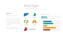 PowerPoint Infographic - 046 Organs