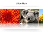 Banner Horizontal Lg PPT PowerPoint presentation slide layout