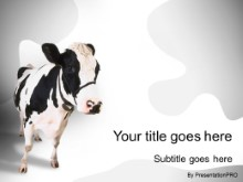 Download cow 2 PowerPoint Template and other software plugins for Microsoft PowerPoint