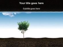 Download small tree PowerPoint Template and other software plugins for Microsoft PowerPoint