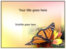 Download butterfly PowerPoint Template and other software plugins for Microsoft PowerPoint