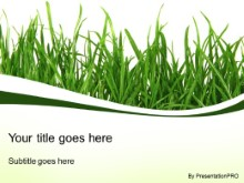 Download grass blades PowerPoint Template and other software plugins for Microsoft PowerPoint