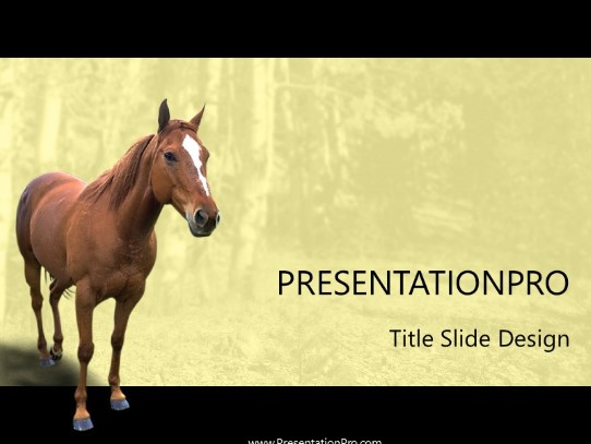 Horse 2 Powerpoint Template Background In Agriculture Animals