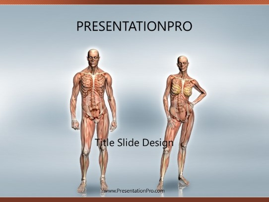 Anatomy Powerpoint Template Background In Medical