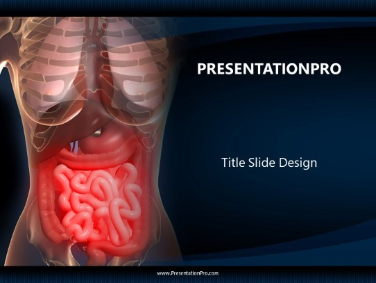 Human Anatomy With Organs PowerPoint template background in