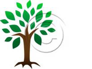 Symbollic Tree PPT PowerPoint picture photo