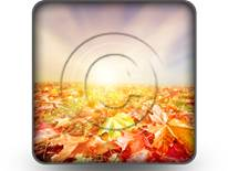 Autumn Fall Square PPT PowerPoint Image Picture