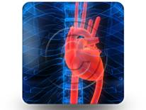 Anatomy Heart 01 Square PPT PowerPoint Image Picture