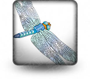 Download insects dragonfly b PowerPoint Icon and other software plugins for Microsoft PowerPoint