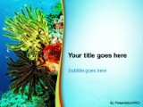 Marine life powerpoint template background in nature powerpoint download marine life powerpoint template and other software plugins for microsoft powerpoint toneelgroepblik Images